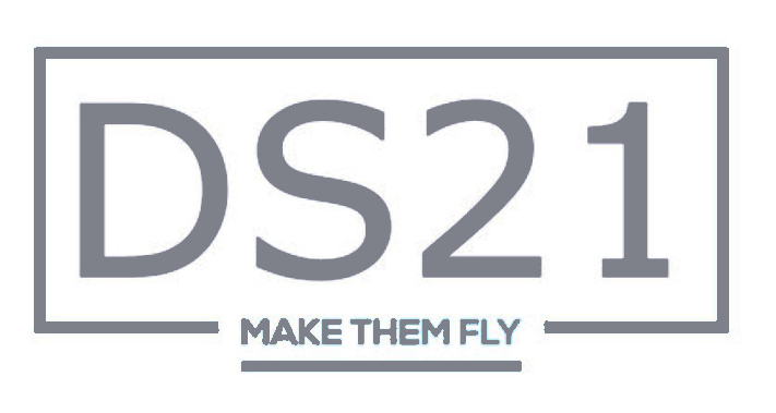DS21logo website